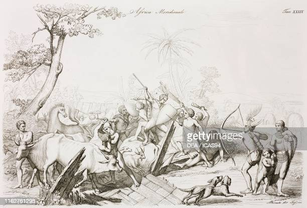 Battle between Hottentots and Kaffir to contend horses and cattle Hottentot woman Hottentot archer Hottentot warrior Kaffir warrior Kaffir warrior...