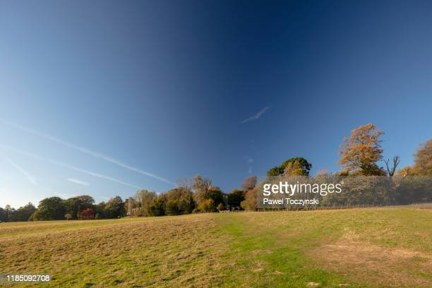 1066 battle of hastings battlefield, england, 2018 - battlefield stock pictures, royalty-free photos & images