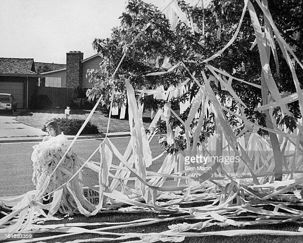 JUL 2 1977 Battlefield Cleaned Kathy Sotiros of 2143 S Yarrow St Lakewod gathers up part of the 100 rolls of toilet paper she found hanging from...