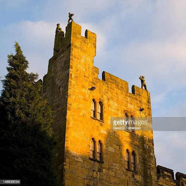 battlements of alnwick castle. - alnwick castle stock pictures, royalty-free photos & images