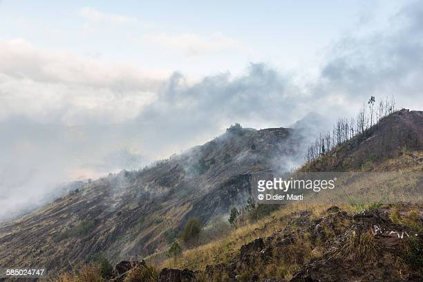 batur volcano in bali - didier marti stock photos and pictures