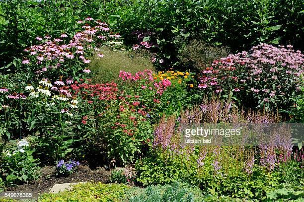 Bauerngarten mit bunten Sommerblumen