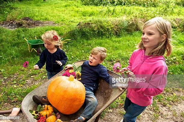 BauernhofKindergarten Wilkenshoff in Hollenstedt Ochtmannsbruch Bundesweit gibt es etwa zehn Kindergärten die dauerhaft auf einem...