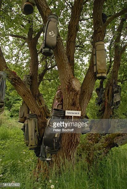 Baum mit Golftaschen Golfplatz GolfHotel Fahrenbach Tröstau Bayern Deutschland Europa Reise Taschen