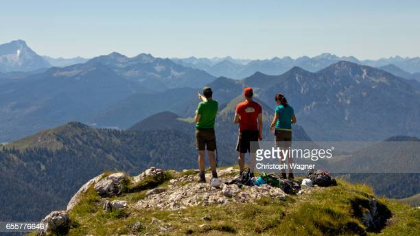 bavaria alps - benediktenwand - sorglos stock pictures, royalty-free photos & images