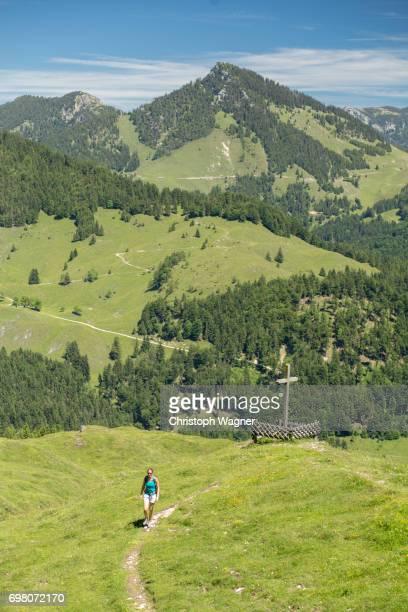 bavaria alps - chiemgau - oberbayern stock-fotos und bilder