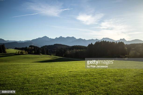 bavarian alps - hill stock pictures, royalty-free photos & images