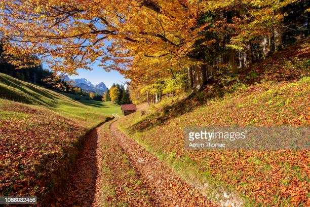 Bavarian Autumn Landscape, Germany, Europe