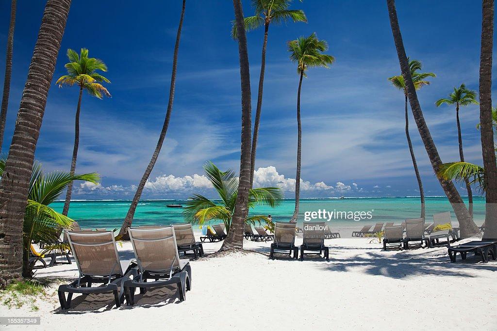 Bavaro beach in Punta Cana : Stock Photo