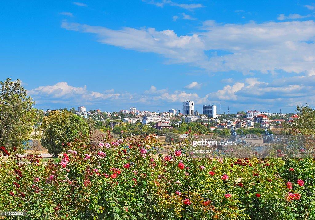 Bay in Sevastopol : Stockfoto