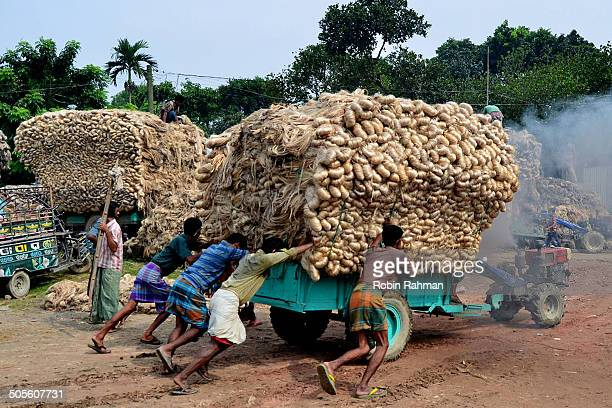 bay labor - day labor in bangladesh stock photos and pictures