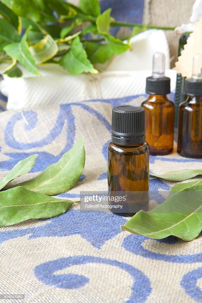 Bay leaf essential oil : Stock Photo