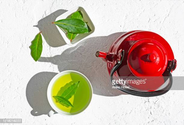bay leaf tea - aniko hobel stock pictures, royalty-free photos & images