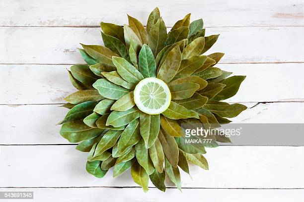 Bay leaves and slice lemon, forming a flower