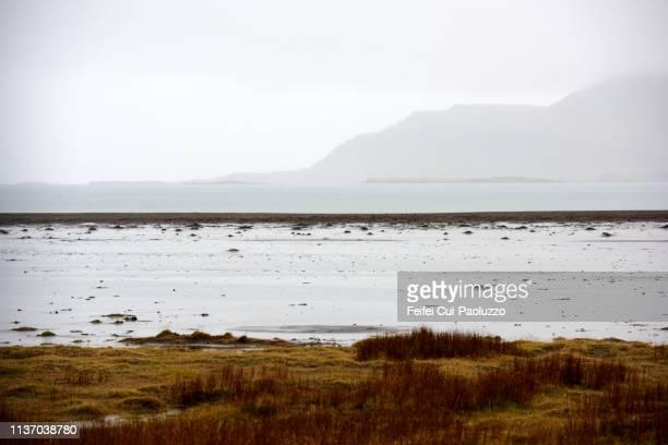 bay of berufjördur, eastern iceland - austurland stock-fotos und bilder