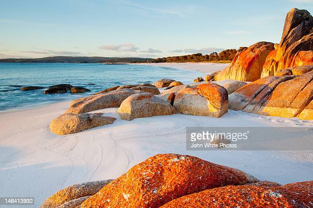 bay of fires in tasmania - hobart tasmania stock pictures, royalty-free photos & images