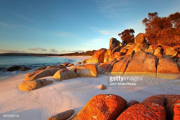 bay of fires. tasmania. australia. - tasmania stock pictures, royalty-free photos & images