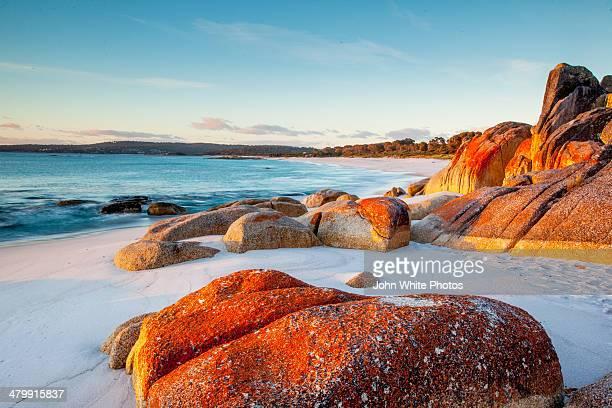 bay of fires. tasmania. australia. - hobart tasmania stock photos and pictures