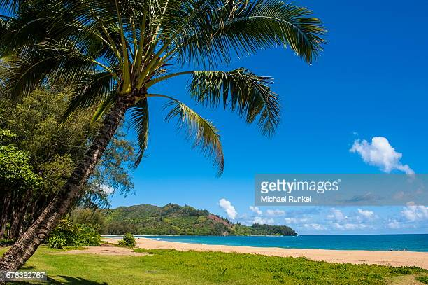 bay of hanalai on the island of kauai, hawaii, united states of america, pacific - michael stock photos and pictures