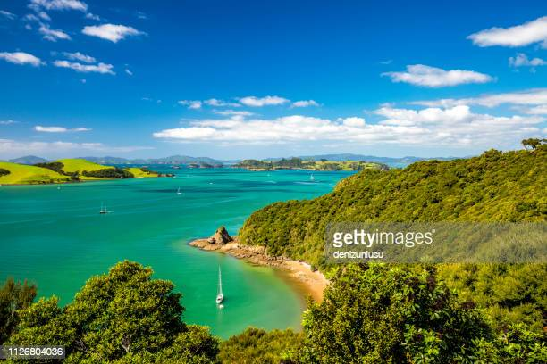 bay of islands, new zealand - northland new zealand stock pictures, royalty-free photos & images