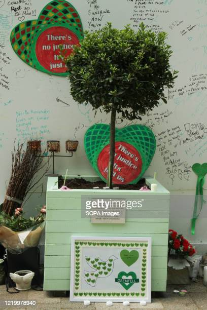 A bay tree by the Grenfell Tower Memorial Commission to commemorate the 3rd anniversary of the Grenfell fire Seventytwo people were killed in the...