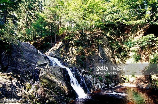 Bayehon waterfall High Fens Natural Reserve Ardennes Belgium