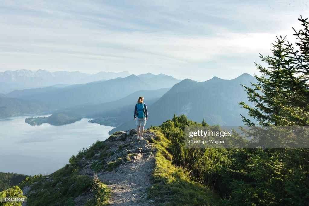 Bayerische Alpen - Herzogstand : Foto de stock