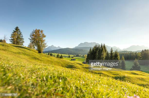 bayerische alpen - mittenwald and isar - mittenwald stock pictures, royalty-free photos & images