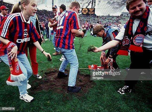 Bayern Muenchen - Stuttgart 4-2 24.05.97, Im Olympiastadion wurde der Rasen von den Fans abgetragen, als Andenken an die Meisterschaft
