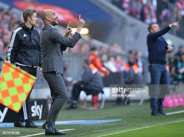 Bayern Munich's Coach Pep Guardiola gestures during the Bundesliga soccer match between FC Bayern Munich and FC Schalke 04 at the Allianz Arena in...