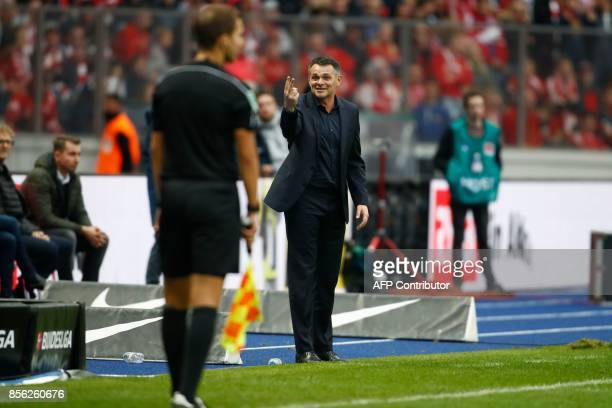 Bayern Munich's French interim head coach Willy Sagnol argues with the linesman during the German first division Bundesliga football match between...