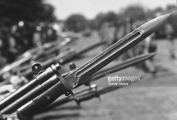 60 Top Bayonet Pictures, Photos, & Images - Getty Images
