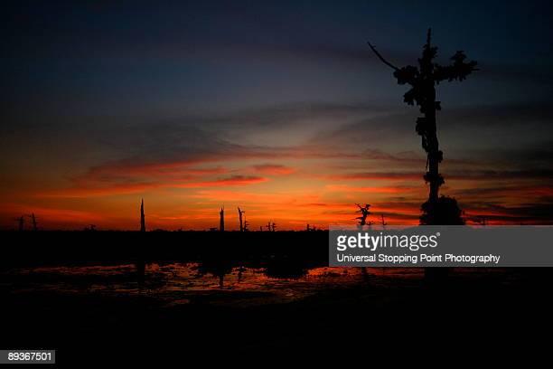 bayou crucifixion - louisiana stock photos and pictures