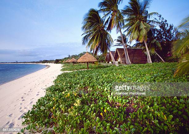 bazaruto lodge in mozambique - mozambique stock pictures, royalty-free photos & images
