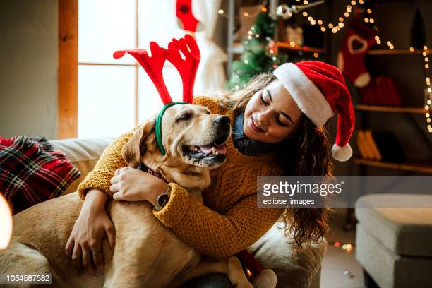 be patient, we'll see the santa - christmas dog stock pictures, royalty-free photos & images