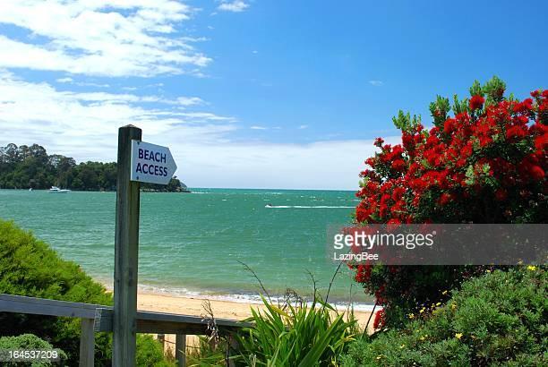 Der Zugang zum Strand am Kaiteriteri, Sommer