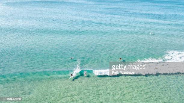 beach aerials, australia - mittelgroße personengruppe stock-fotos und bilder