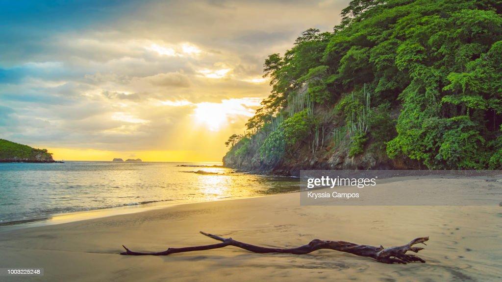 Beach and Jungle at Sunset in Costa Rica : Foto de stock