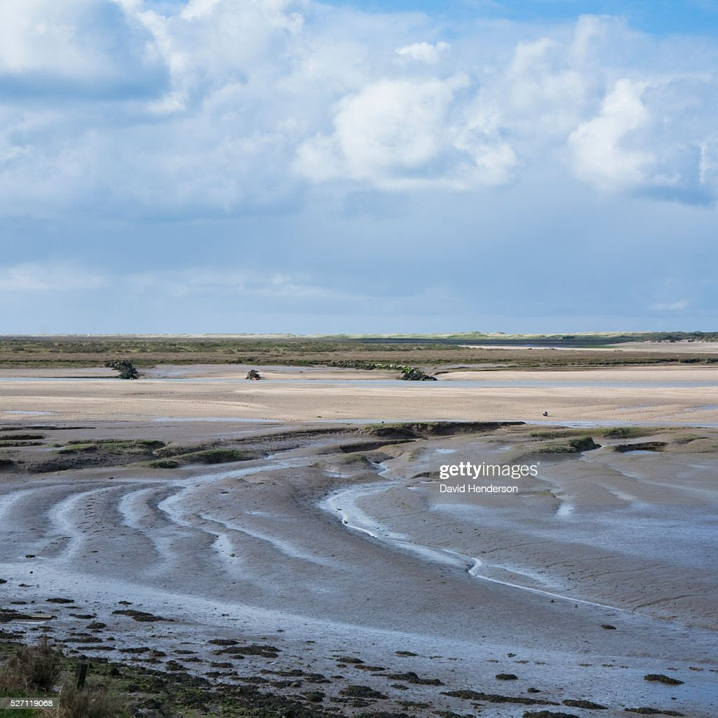 Beach and mudflats : Foto de stock