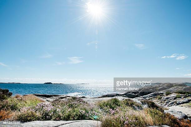 beach and sea in bright sunlight, south norway - soleggiato foto e immagini stock