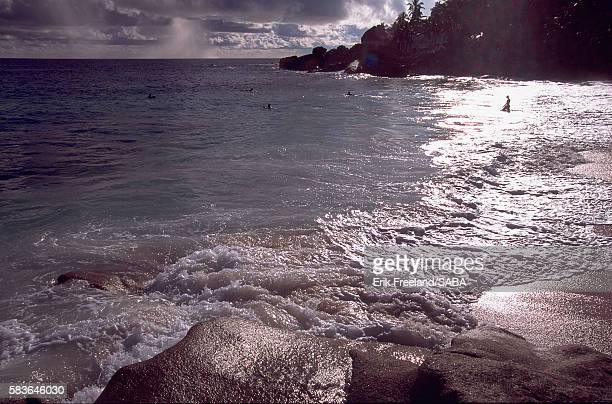 beach and surf along indian ocean - fregate stock photos and pictures