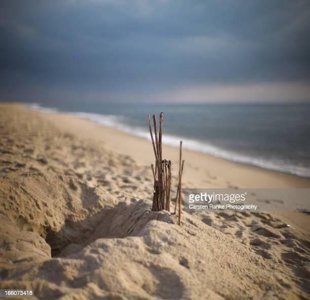 Beach Art, Kampen