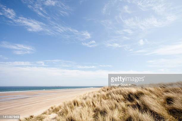 beach at bamburgh, northumberland, uk - northumberland stock pictures, royalty-free photos & images