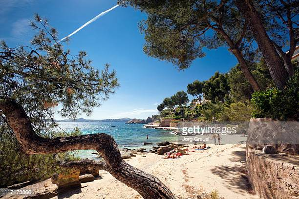 beach at cala fornells - majorca stock pictures, royalty-free photos & images