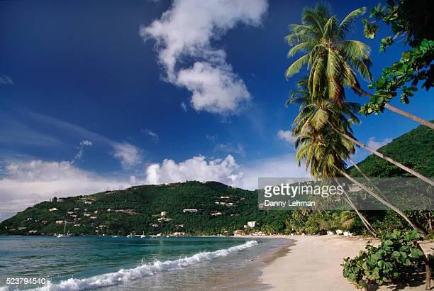 beach at cane garden bay on tortola - cane garden bay stock pictures, royalty-free photos & images