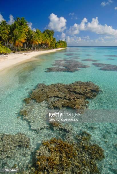 Beach at Fakarava Atoll , Tuamotu Islands, French Polynesia.