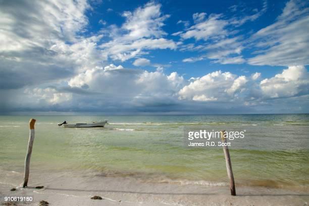 beach at holbox island - holbox island fotografías e imágenes de stock