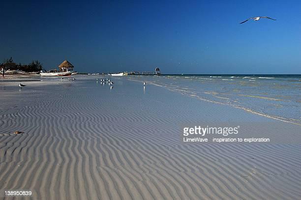 Beach at Isla Holbox, Mexico
