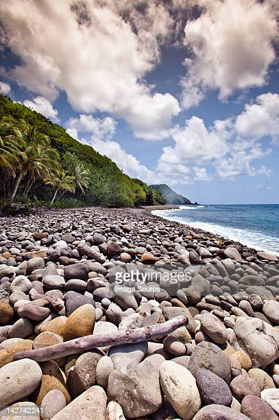 playa en jungle bay resort, dominica, menor holandesas - dominica fotografías e imágenes de stock