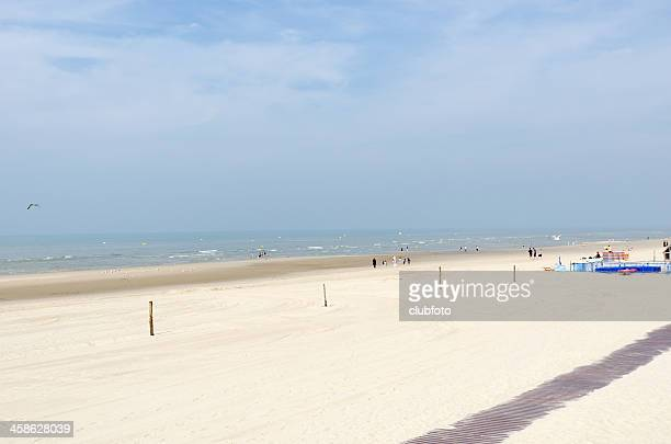 beach at le touquet, picardy, france - le touquet paris plage stock pictures, royalty-free photos & images